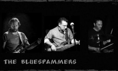 | THE BLUESPAMMERS |